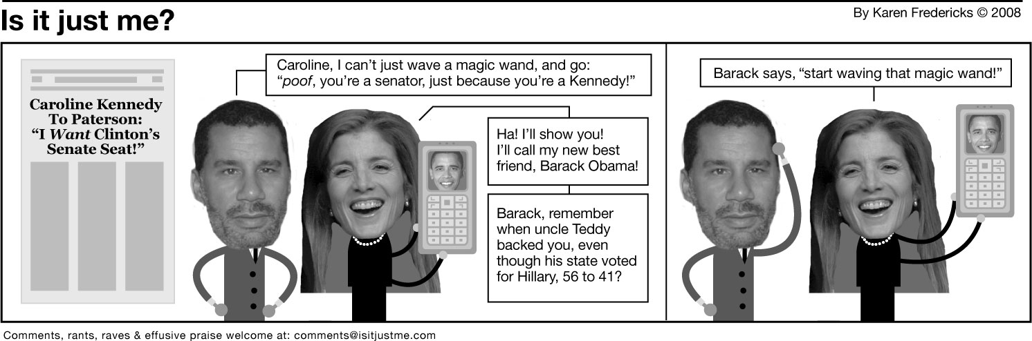 Caroline Kennedy for the senate? Have her fax me her resume.